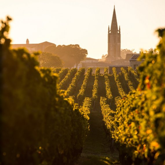 Saint-Emilion Wine and Village - HDM