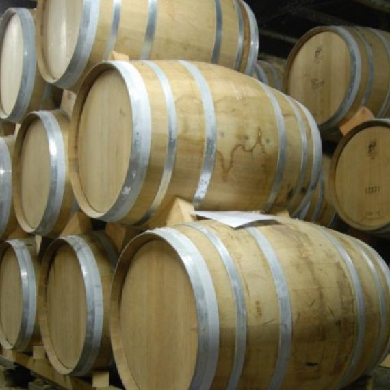 The Cognac, a luxury and terroir product - Day Tour